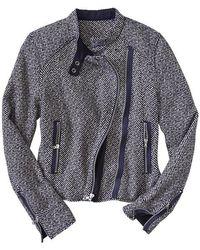 Gap Cropped Wool Moto Jacket - Blue