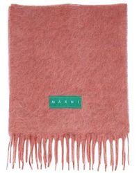 Marni Scarf - Pink
