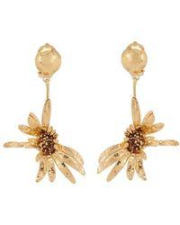 Marni Brass Earrings - Metallic