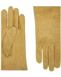 Agnelle Handschuhe Saumur - Mehrfarbig
