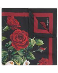 Dolce & Gabbana Floral Print Foulard - Multicolour