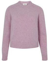 Celine Crew Neck Sweater In Shetland Wool - Pink