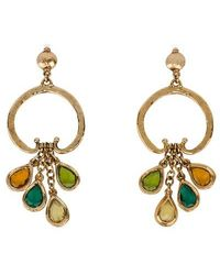 Alberta Ferretti Earrings - Multicolour
