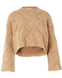 JW Anderson Cropped Oversize Crewneck - Brown