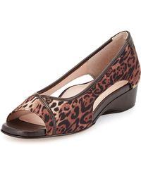 Taryn Rose Katy Leopard-Print Peep-Toe Stretch Wedge - Lyst