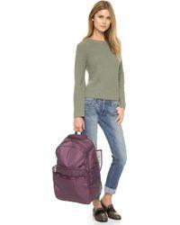 LeSportsac Rolling Backpack - Burgundy Pin Dot - Purple