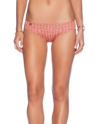 Maaji Cheeky Bikini Bottom - Lyst