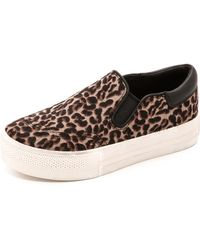 Ash Jam Leopard Haircalf Slip On Sneakers  Smogblack - Lyst