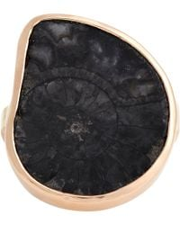 Dezso by Sara Beltran - Fossilized Ammonite Ring-Colorless - Lyst
