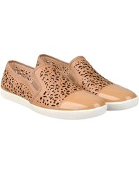 Carlo Pazolini Low-Tops & Trainers - Lyst