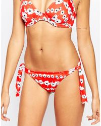 Freya | Tula Rio Scarf Tie Side Bikini Brief | Lyst