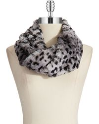 Steve Madden Leopard Print Cowl Scarf - Lyst