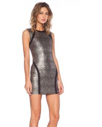 Capulet Bodycon Dress - Lyst