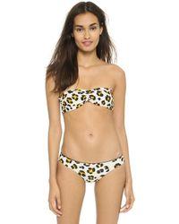 Rachel Pally - Zanzibar Bandeau Reversible Bikini Top - Black/lynx - Lyst