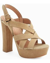 Joie 'Inez' Snake Embossed Leather Platform Sandal - Lyst