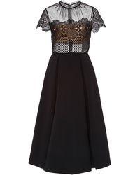 Self-Portrait Felicia Two-tone Guipure Lace Mini Dress - Black