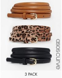 Asos Curve Leopard Hip And Waist Belt In 3 Pack - Lyst