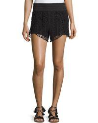 Philosophy - Crochet Scalloped Shorts - Lyst