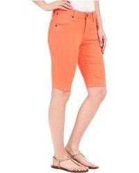 Kut From The Kloth Natalie Bermuda Shorts In Tangerine - Orange