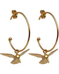 Alex Monroe Gold-plated Hummingbird Hoop Earrings - Metallic
