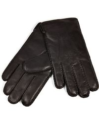 Polo Ralph Lauren Cashmere Lined Leather Gloves - Lyst