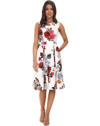 Adrianna Papell Rose Print Classic Pleat Dress - Lyst