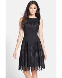 Cynthia Steffe 'Amalia' Fit & Flare Dress black - Lyst
