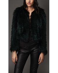 Burberry Collarless Fox Fur Jacket - Lyst