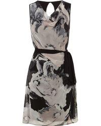 Coast Orane Printed Dress - Lyst
