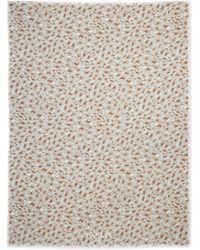 Lanvin Leopard-print Voile Stole - Lyst