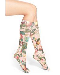 Strathcona - Strathcoma Fruit Print Knee High Trouser Socks - Lyst