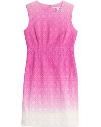 Diane von Furstenberg Cotton Shift Dress - Lyst