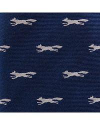 Paul Costelloe - Navy Twill Fox Silk Tie - Lyst