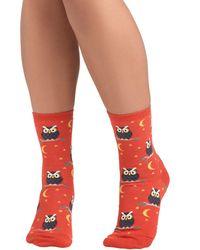 Socksmith Owl-Inclusive Socks - Lyst