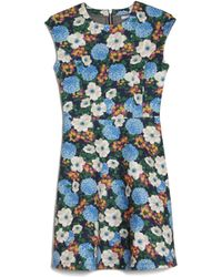 Carven | Floral Fit-and-flare Dress | Lyst