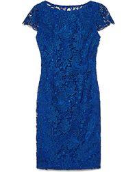 Vince Camuto Cobalt Blue Short-Sleeve Floral Lace Dress - Lyst