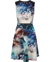 Coast Millie Print Dress - Lyst