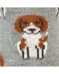 John Lewis Beagle Ankle Socks - Multicolour