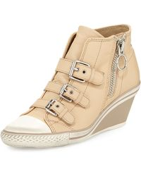 Ash Gin Bis Buckled Leather Wedge Sneaker - Lyst