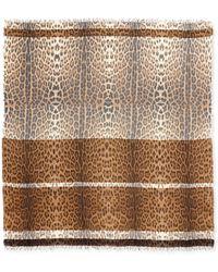 Roberto Cavalli Leopard-print Wool-blend Wrap - Lyst