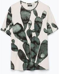 Zara Printed T-Shirt green - Lyst