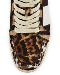 Christian Louboutin Rantus Print Calfhair Hightop Sneaker Tmoro - Lyst