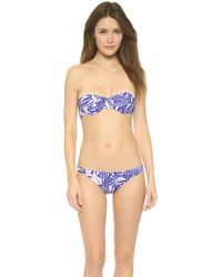 Milly Zebra King Bikini Top - Cobalt - Lyst