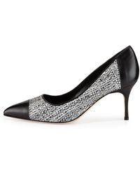 Manolo Blahnik Faggio Tweed Captoe Pump - Lyst