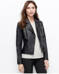Ann Taylor Quilted Faux Leather Jacket - Lyst