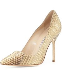 Manolo Blahnik Bb Watersnake 105mm Pump - Lyst