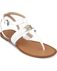Tommy Hilfiger Womens Lorine Flat Thong Sandals - Lyst