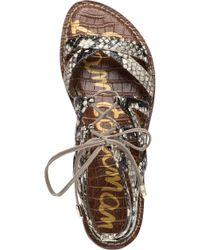 Sam Edelman | Gemma Putty Snake Skin Gladiator Sandal | Lyst