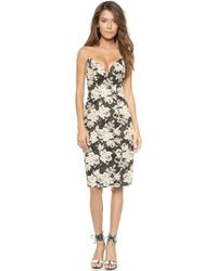 Zimmermann Lace Print Strapless Dress  Petal - Lyst