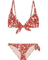 Tory Burch Issy Printed Triangle Bikini - Lyst